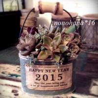 ☆ 2015年 ☆ 明けましておめでとうございます♪