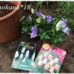 春のお庭の準備始めました☆