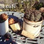 カフェランチ☆ alii cafe さんで偶然リメイク缶と再会するの巻!