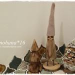 我が家のクリスマス多肉達☆